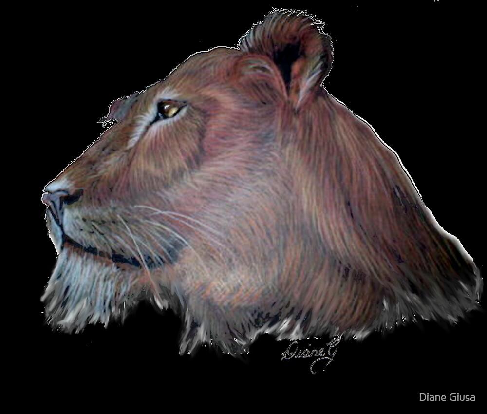 Lioness by Diane Giusa