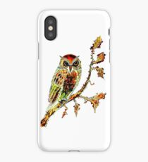 Brown Owl iPhone Case/Skin