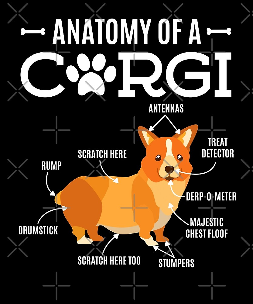 Anatomy Of A Corgi Funny Dog Lover Gift By Japaneseinkart Redbubble
