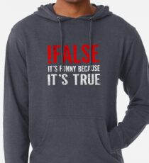 !False It's Funny Because It's True Programmer Quote Geek Lightweight Hoodie