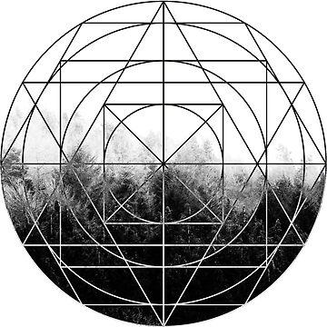 The Forest by laurenpbennett