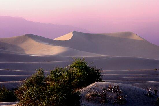 Sunset Dune by Varinia   - Globalphotos