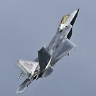 F22 Raptor by andy lewis
