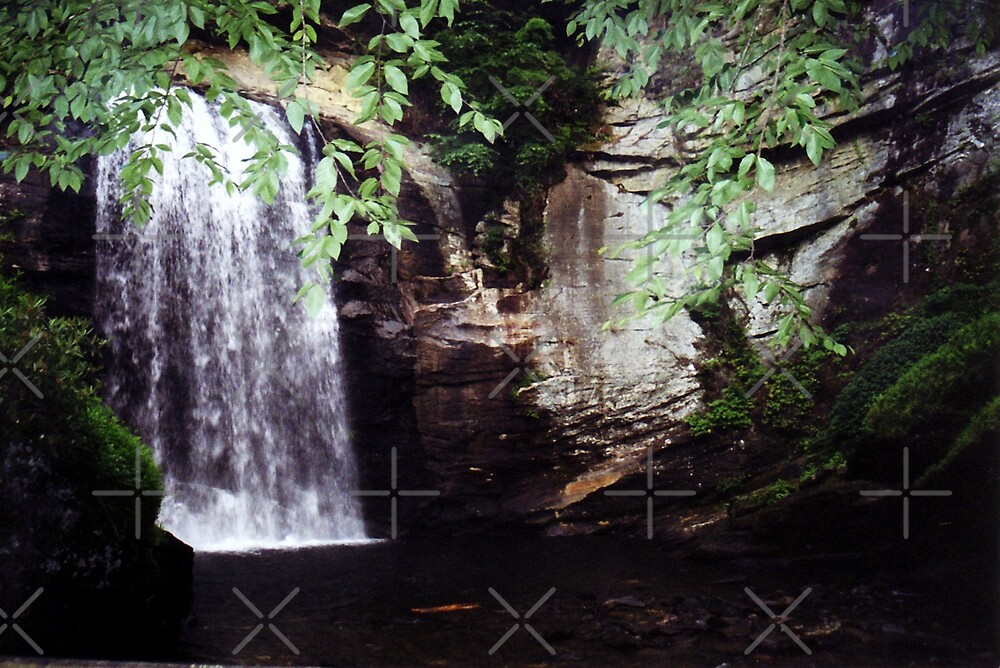 Looking Glass Falls ll by Julie's Camera Creations <><