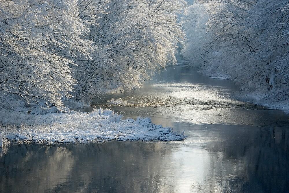 November Snow by Michael  Dreese
