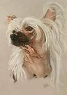Chinese Crested Dog by BarbBarcikKeith
