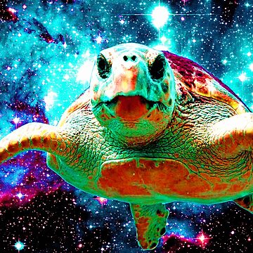 Space Turtle by lord-sativa