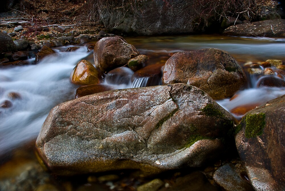 little cottonwood creek  by Rachel  McKinnie