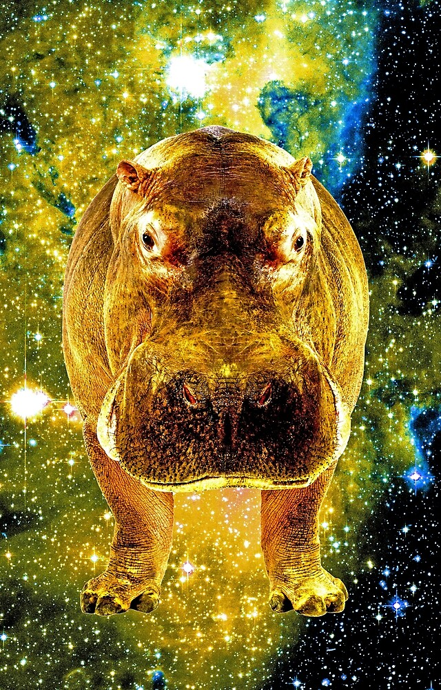 Space Hippo\