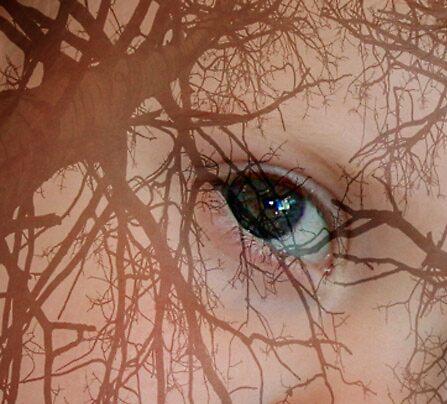 Eye upon Trees by kristiane