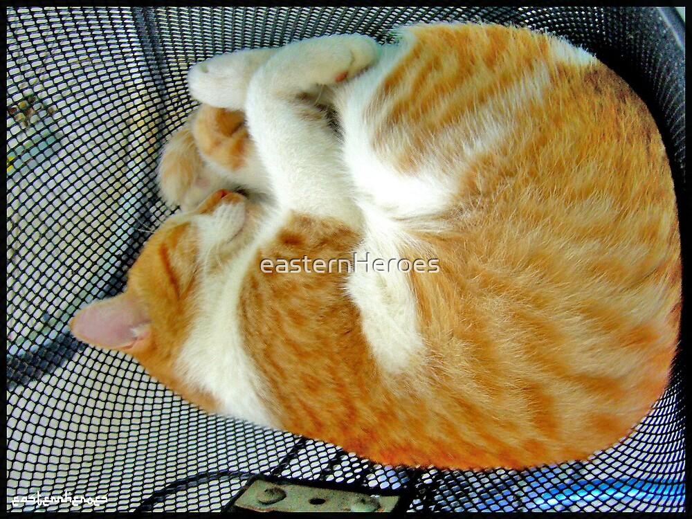Sleeping Cats by easternHeroes