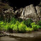 Yosemite dColoring 03 by Daniel H Chui