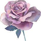 Rose by Emma   Reznikova