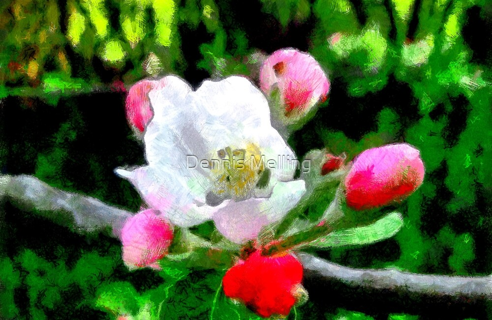 A digital painting of Apple Blossom in Romania by Dennis Melling