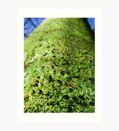Tree Fluff Art Print