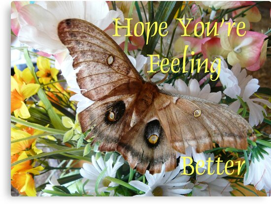 Hope Youre Feeling Bettercard Canvas Prints By Maebelle Redbubble
