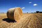 Hay Bale - Cobram by Darren Stones