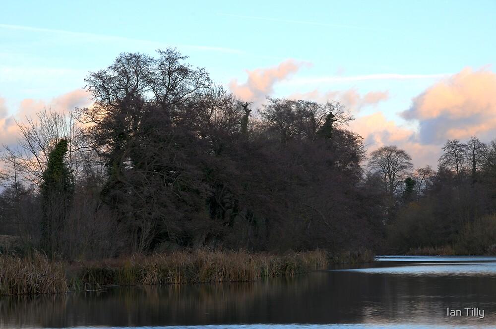 Lake at Hothfield by Ian Tilly
