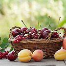 Frische Früchte im Korb by Aviana