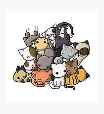Pile of Kitties Photographic Print