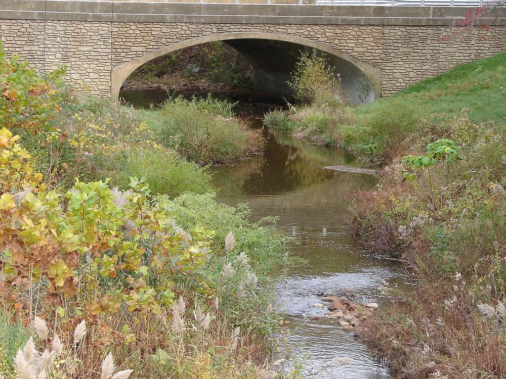 Ole'bridge... by Glen Baker