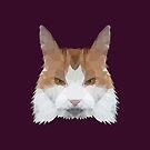 Poly Cat by kuraikyo