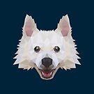 Poly Dog by kuraikyo