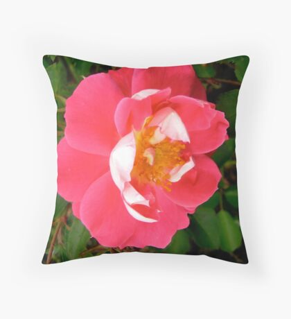 Governor General's rose 6 Throw Pillow
