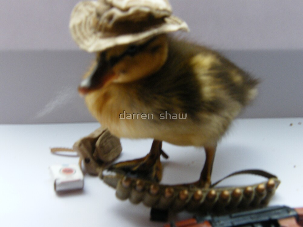 hard as f======k duckling by darren  shaw
