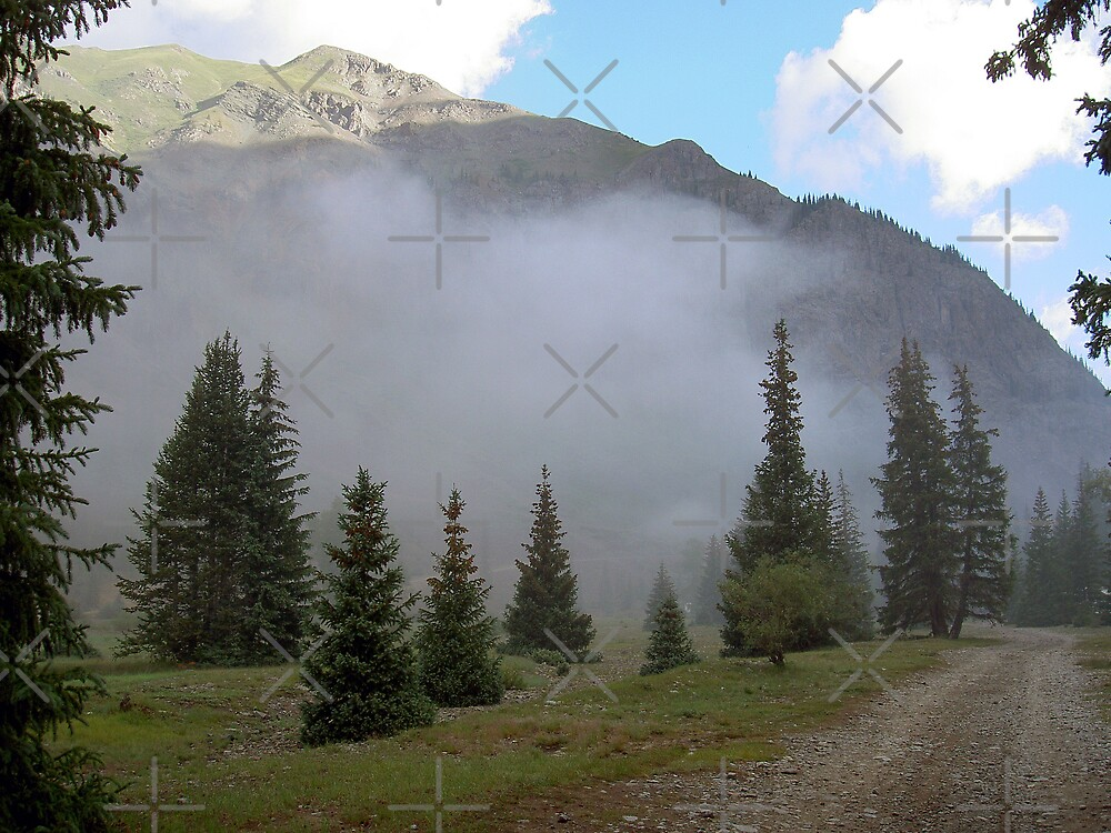Foggy Morning in the Rockies by CarolM