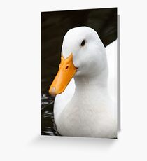 Waterfowl Greeting Card