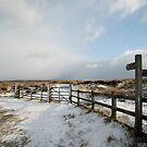 Fryup Dale - After the Snow by dougie1