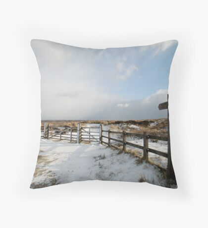 Fryup Dale - After the Snow Throw Pillow