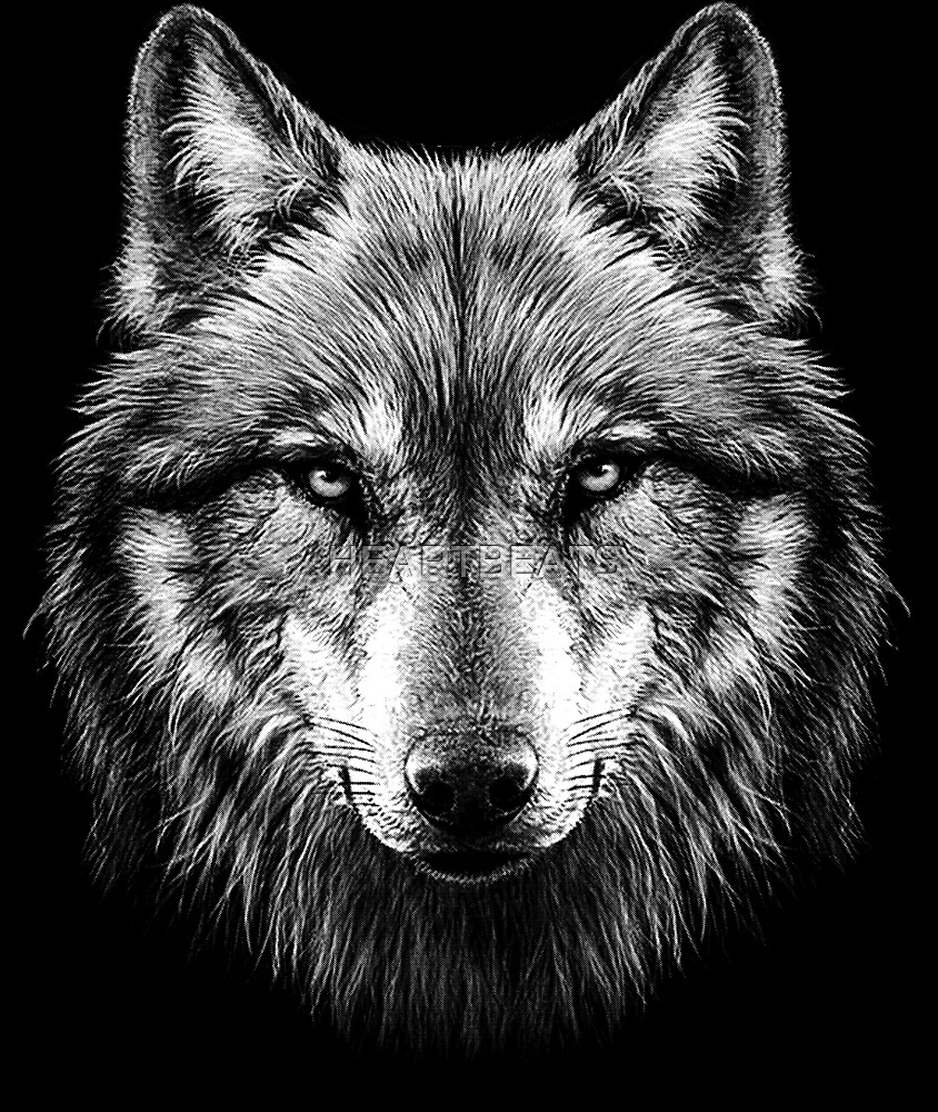 Quot Wolf Face Quot By Heartbeats Redbubble