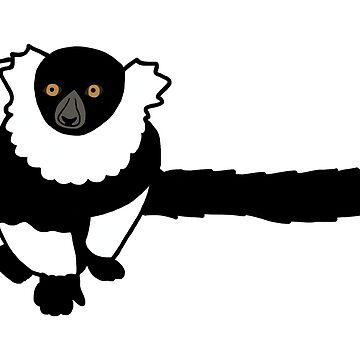 Kizzy the Black and White Ruffed Lemur by wildlifeandlove