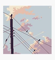 Birds and Electricity Photographic Print