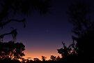 NDVH Fraser Island 11 by nikhorne