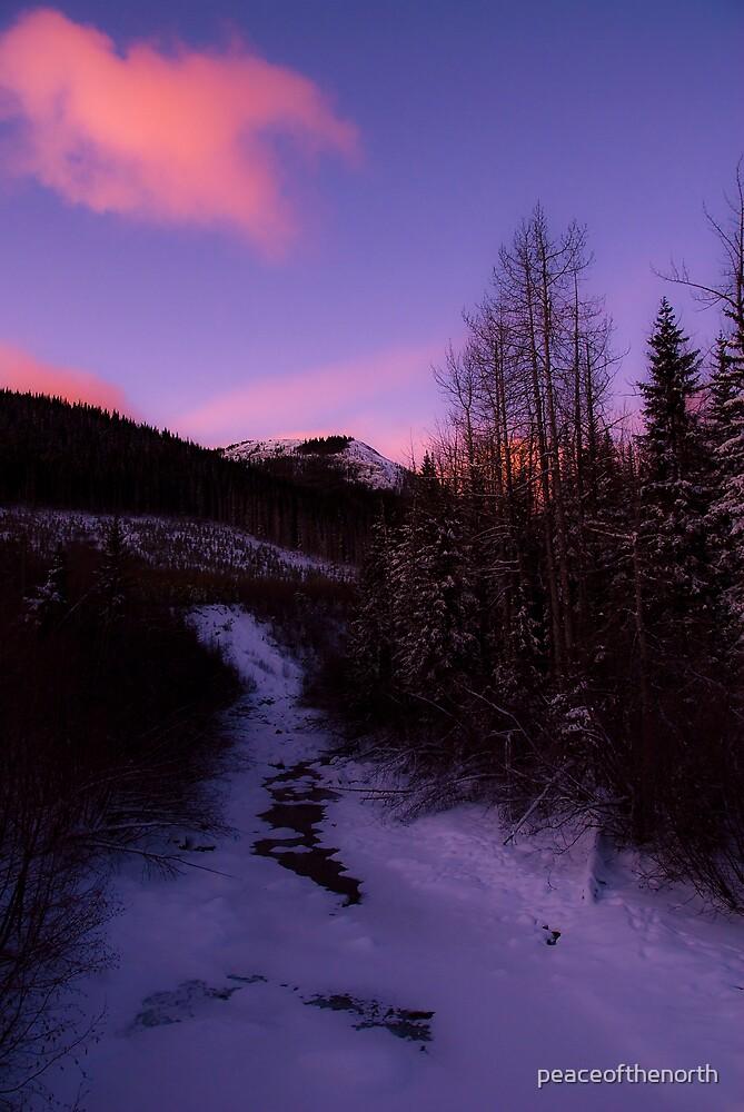 Horseshoe Creek (winter view) by peaceofthenorth