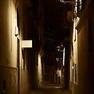 Dark Street by Svetlana Sewell