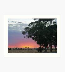 Wimmera Sunrise Art Print