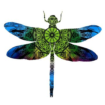 Kaleidoscope Dragonfly by deleas