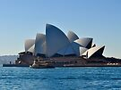 NDVH Sydney 8 by nikhorne