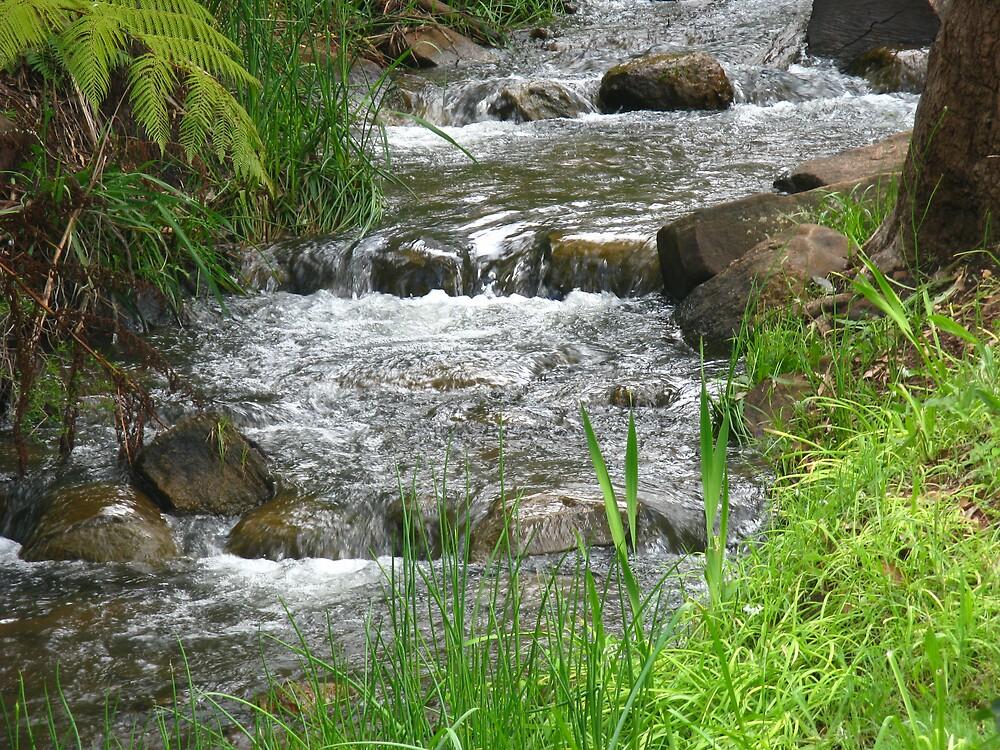 A River In Time by Rebecca Laffar-Smith