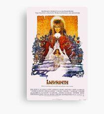 Labyrinth 86 Canvas Print