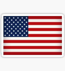 United States of America Flag (Large) Sticker