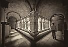 Exploring Cloisters by Raymond Warren