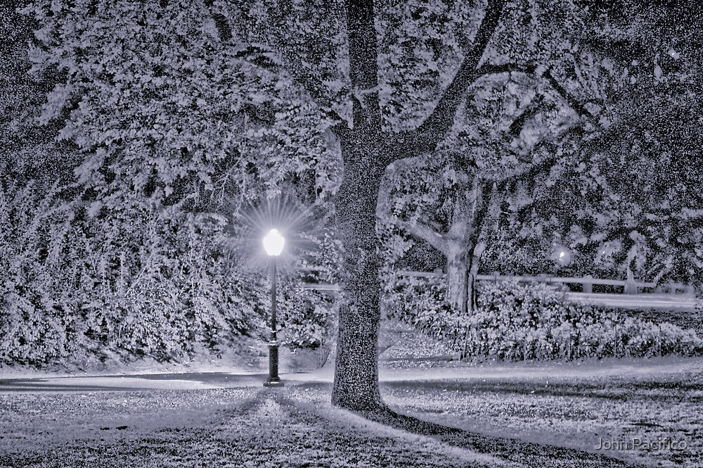 Winter in Central Park by John Pacifico