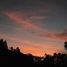 ~Balhannah Sunset~ by Debra LINKEVICS