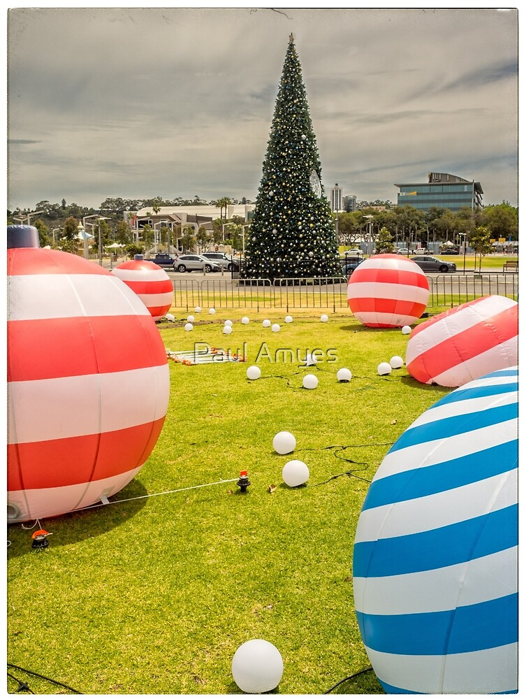 Christmas Decorations by Paul Amyes