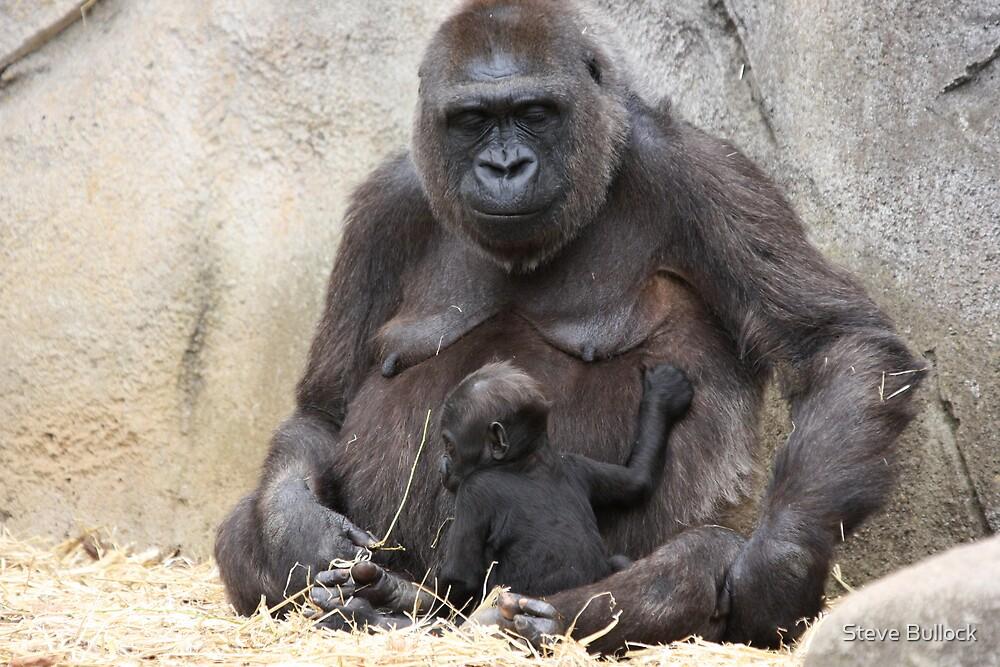 Mum and new born.. by Steve Bullock